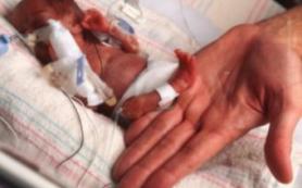 В Петербурге появится реестр рожденных с экстремально низким весом детей
