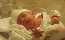Узнай, почему недоношенные дети боятся боли