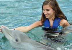 Роды с дельфинами: прогрессивный метод родовспоможения или шарлатанство?