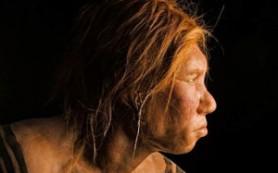 Дети неандертальцев находились на грудном вскармливании до 7 месяцев