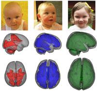 Грудное вскармливание полезно для детского мозга