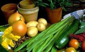 Вегетарианство может стать причиной бесплодия