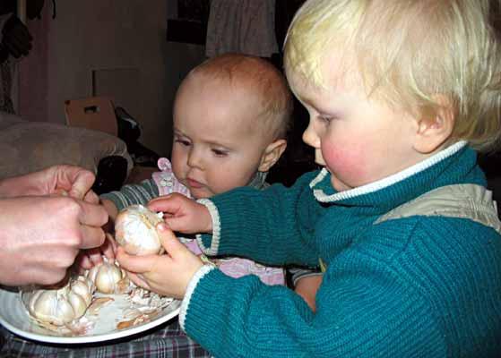 В детское питание предлагается добавлять чеснок