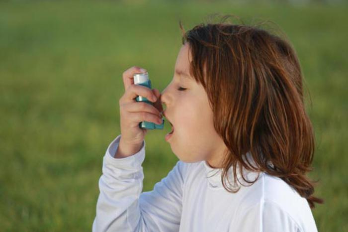 Детская астма может быть связана с пренатальной экспозицией по поллютантам атмосферного воздуха во 2-м триместре внутриутробного развития