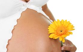 Какие основные признаки беременности