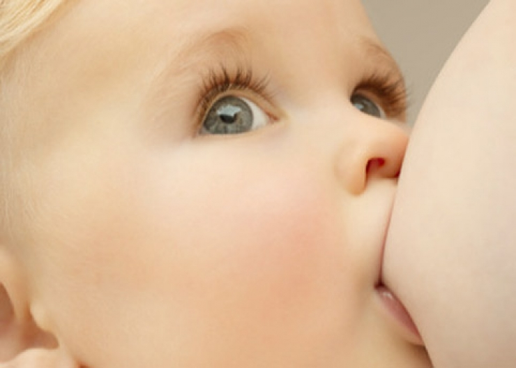 Грудное молоко — источник стволовых клеток