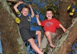 Лазание по деревьям в детстве улучшает память