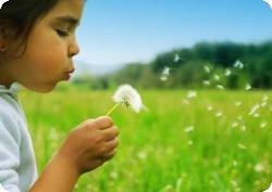 Детство в деревне не даст шанса астме и аллергии