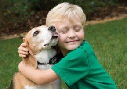 Собака – средство профилактики детской астмы
