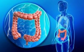Медики: бактериальное воспаление кишечника – одна из причин женского бесплодия
