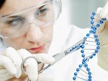 Мутация в одном гене приводит к множеству врожденных дефектов
