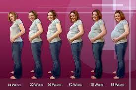 Тонкости открытия курсов для беременных