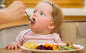 Маленькие тарелки помогут предотвратить ожирение у детей