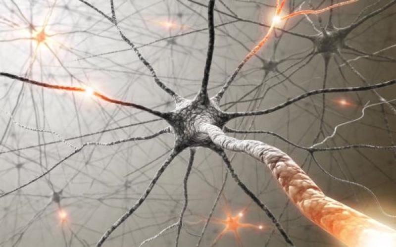 Как улучшить состояние нервной системы