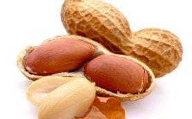 Врачи заявили, что кормление детей арахисом помогает уберечься от аллергии на него