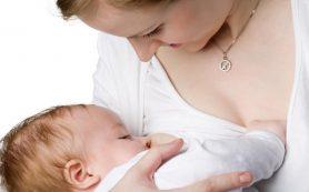 Микробы, получаемые ребенком при кормлении грудью, стимулируют усиление иммунитета ребенка