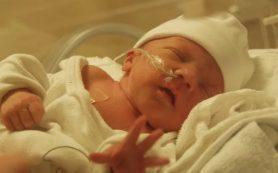 Стволовые клетки плаценты, возможно, смогут помочь при родовых травмах мозга