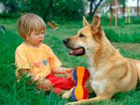 Домашние животные оказались полезнее для детей, чем считалось