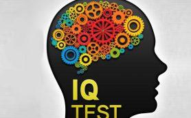 Тесты на IQ абсолютно бесполезны для детей