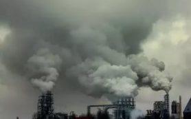 Загрязнители окружающей среды затрудняют беременность