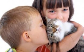 Кого дети любят больше животных или сестер и братьев?