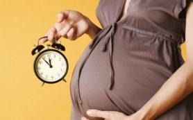 Ученые исследуют феномен «детского мозга» у беременных
