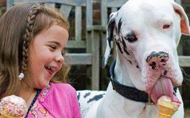 Дети предпочитают проводить время с домашними питомцами, нежели с братьями и сестрами