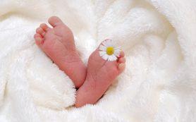 Удмуртия по итогам 2017 года заняла 5 место в ПФО по рождаемости