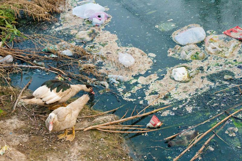Загрязнение водоемов и почвы