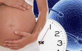 Как повысить шансы на зачатие после 35