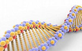Дети после генной редактуры могут умирать раньше