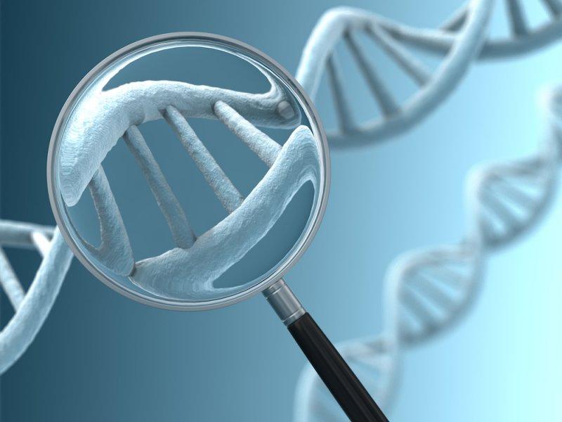 Ученые требуют запретить редактуру генов детей во всем мире