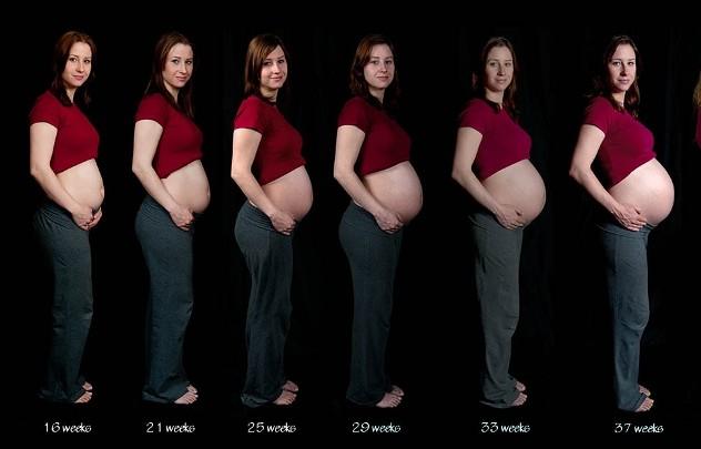 На каком сроке беременности начинает расти живот?