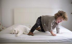 C какого возраста ребенка можно оставлять дома одного