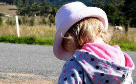 Уровень интеллекта ребенка позволяет спрогнозировать его будущее