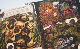 Книжное диво: 5 необычных детских книг