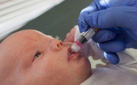 Вакцина от туберкулеза защищает младенцев от других инфекций