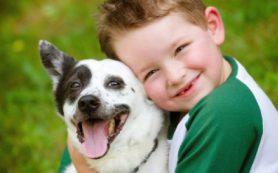 Как малышам вести себя с домашней собакой